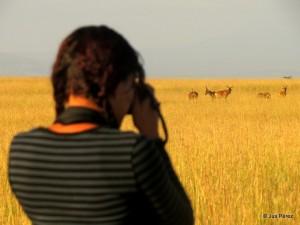 Senkele Wildlife Sanctuary